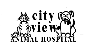 City View Animal Hospital
